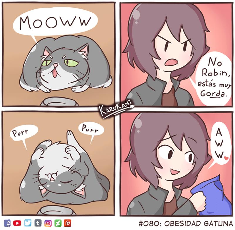 cuando un gato te hace una monada y cedes