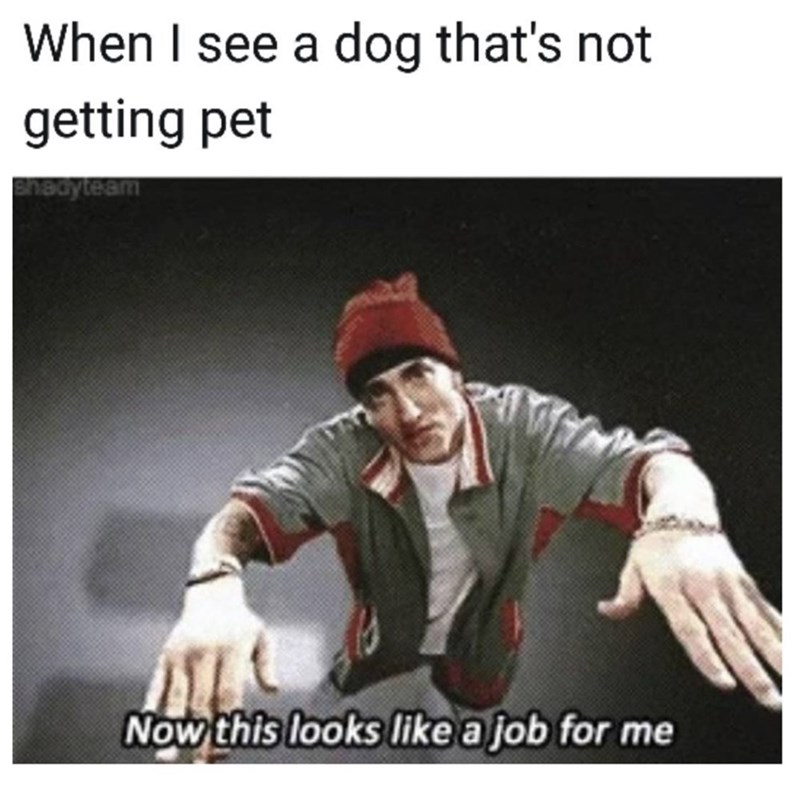 "Caption that reads, ""When I see a dog that's not getting pet"" over a pic of Eminem saying, ""Now this looks like a job for me"""