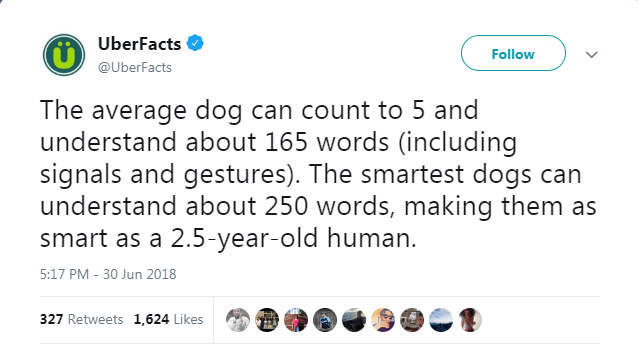 Text - UberFacts Follow @UberFacts The average dog can count to 5 and understand about 165 words (including signals and gestures). The smartest dogs can understand about 250 words, making them as smart as a 2.5-year-old human. 5:17 PM - 30 Jun 2018 327 Retweets 1,624 Likes