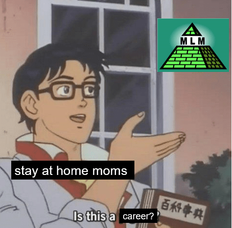 meme about mlm being a pyramid scheme for stay at home moms