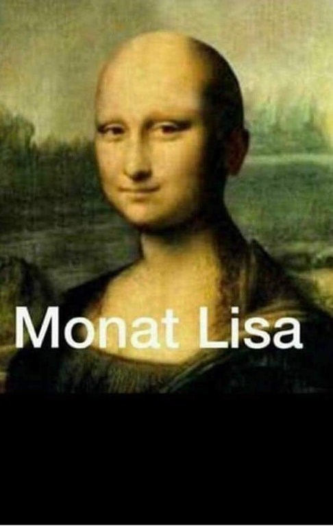 """mona lisa replaced with being bald and called """"monat lisa"""" instead"""