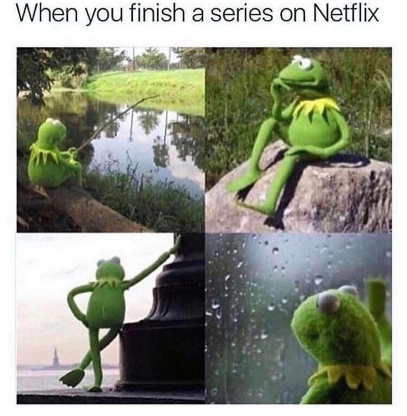 work meme about finishing a Netflix series with pics of Kermit deep in thought in different locations