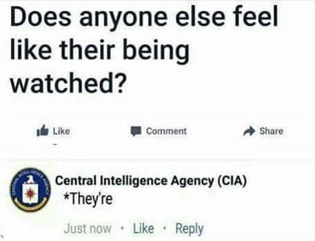 Text - Does anyone else feel like their being watched? Like Share Comment Central Intelligence Agency (CIA) *They're Just now Like Reply