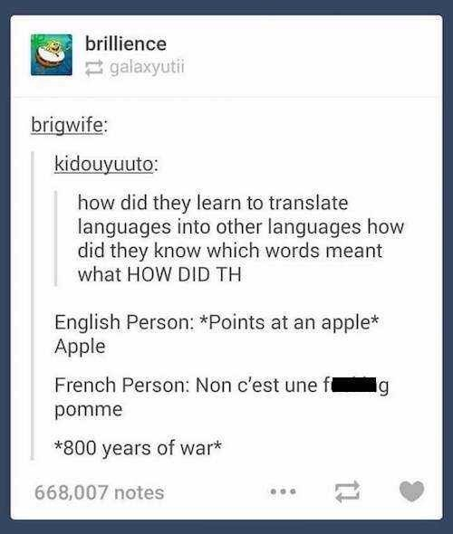 Text - brillience galaxyuti brigwife: kidouyuuto: how did they learn to translate languages into other languages how did they know which words meant what HOW DID TH English Person: *Points at an apple* Apple French Person: Non c'est une ft g pomme *800 years of war* 668,007 notes