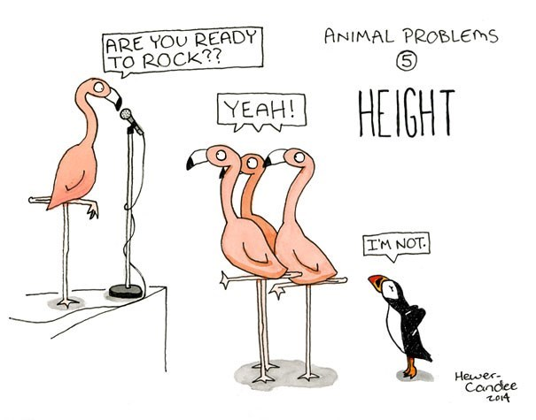 Bird - ARE YOU READY TO ROCK?? ANIMAL PROBLEMS HEIGHT YEAH! IM NOT. Hewer Candee