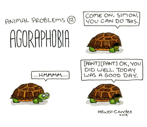 Tortoise - ComE ON, SimON, YOU CAN DO THIS. ANIMAL PROBLEMS (2) AGORAPHOBIA PANTJLPANTJ OK, YOu DID WELL. TODAY WAS A GOOD DAY ... HMMMM... Hewer Canclee to14