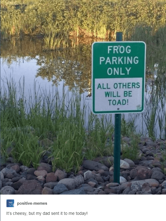 sign next to beautiful lake saying 'frog parking only all others will be toad!'