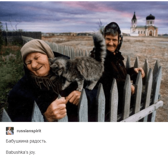 two old russian women outside next to a fence with cat rubbing itself against old woman Babushka's joy