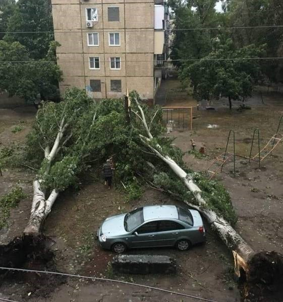 Cheezburger Image 9188486656