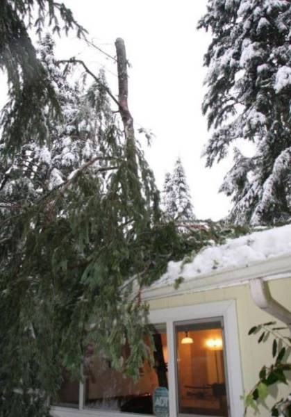 Cheezburger Image 9188490496