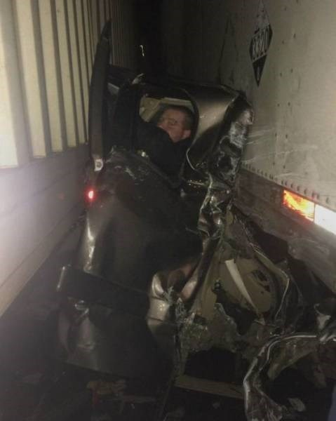 Cheezburger Image 9188490752
