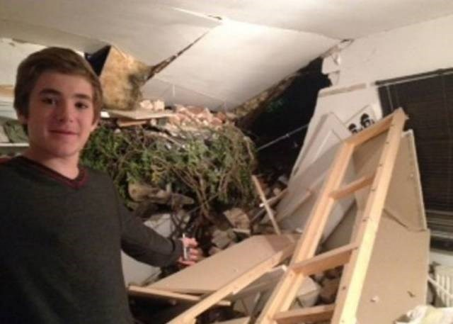Cheezburger Image 9188491520