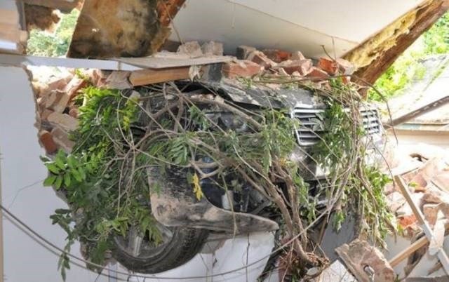 Cheezburger Image 9188492032