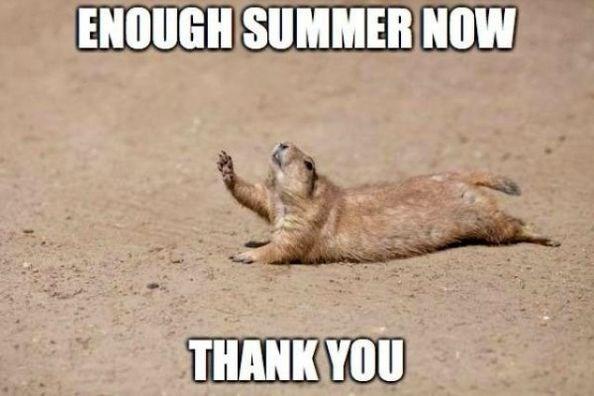 Photo caption - ENOUGH SUMMER NOW THANK YOU