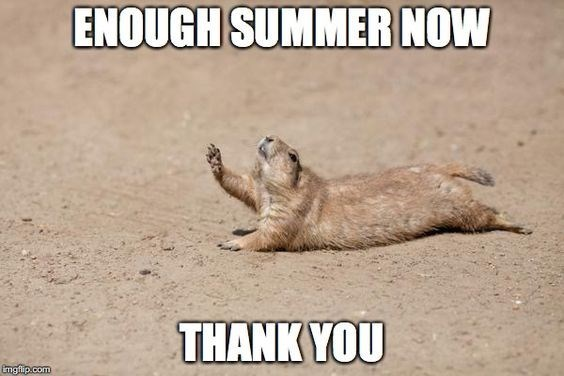 Photo caption - ENOUGH SUMMER NOW THANK YOU mgflip.com