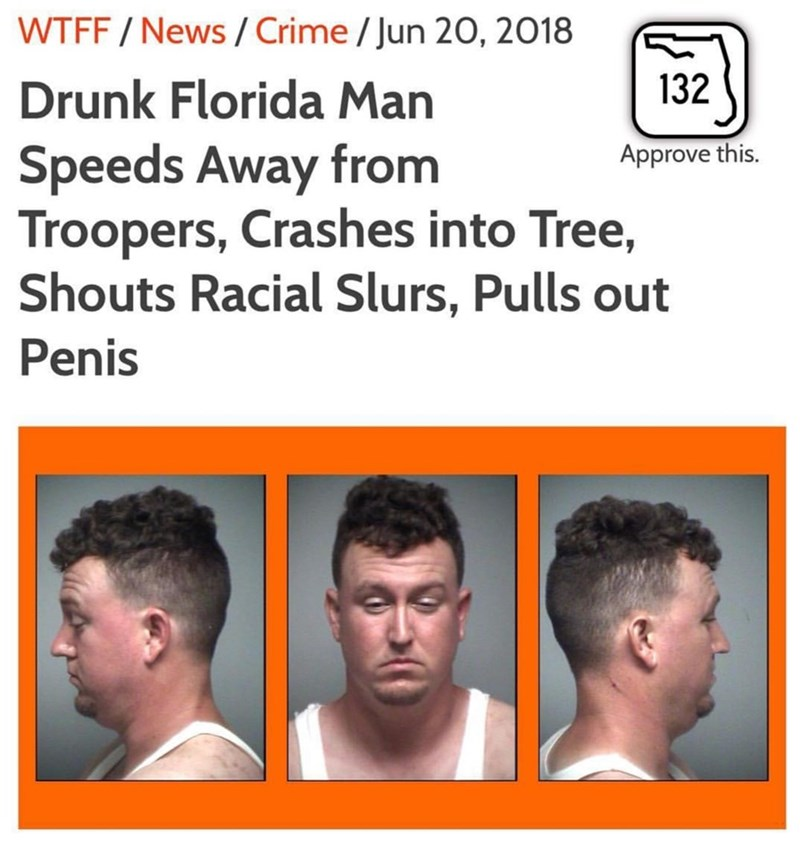 Florida man pulls out penis to cops after crashing into a tree