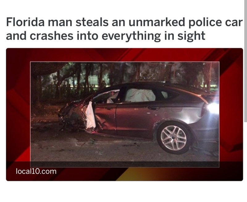 Florida man steals a car and crashes into everything