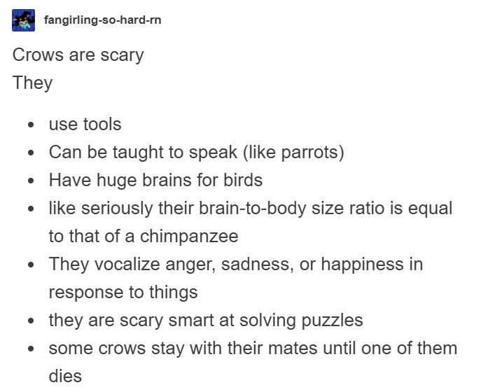 Text - fangirling-so-hard-rn Crows are scary They use tools Can be taught to speak (like parrots) Have huge brains for birds like seriously their brain-to-body size ratio is equal to that of a chimpanzee They vocalize anger, sadness, or happiness in response to things they are scary smart at solving puzzles some crows stay with their mates until one of them dies
