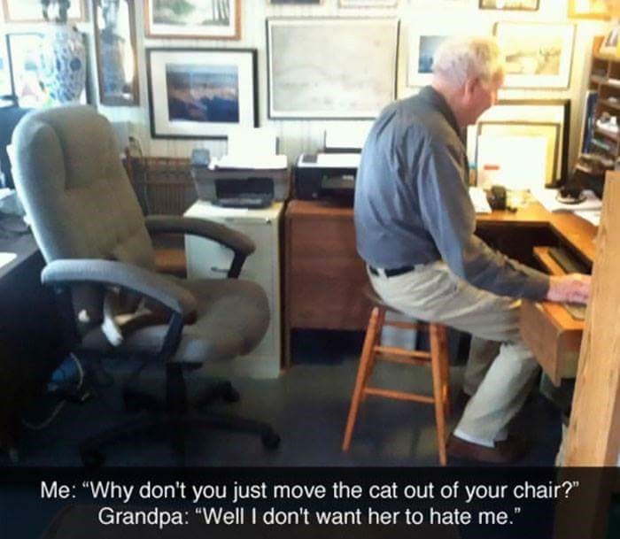 "Office chair - Me: ""Why don't you just move the cat out of your chair?"" Grandpa: ""Well I don't want her to hate me."""