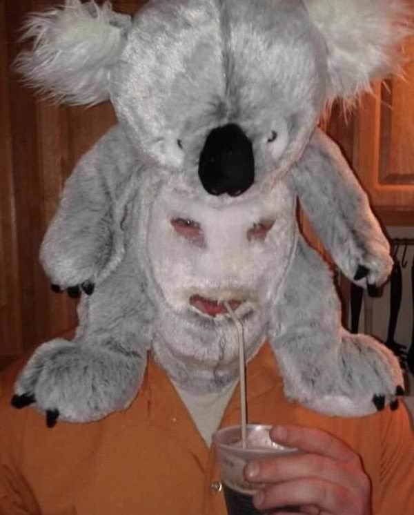 cursed image - Koala bear face mask
