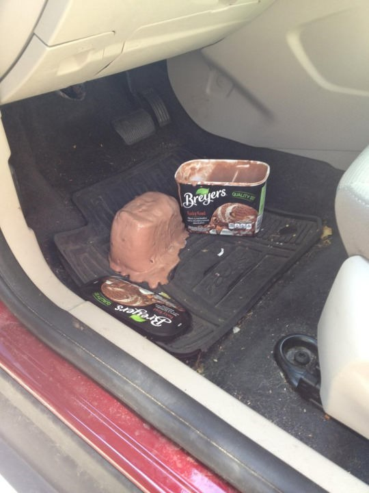 cursed image - Trunk - Breyers QUALITY Breyers