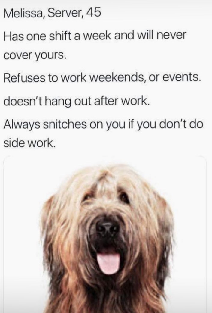 work meme - Dog - Melissa, Server, 45 Has one shift a week and will never cover yours. Refuses to work weekends, or events. doesn't hang out after work. Always snitches on you if you don't do side work.