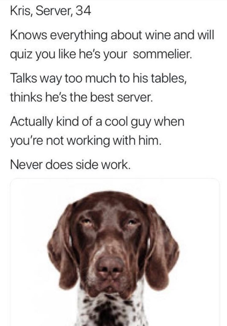 work meme - Dog - Kris, Server, 34 Knows everything about wine and will quiz you like he's your sommelier. Talks way too much to his tables, thinks he's the best server. Actually kind of a cool guy when you're not working with him. Never does side work.