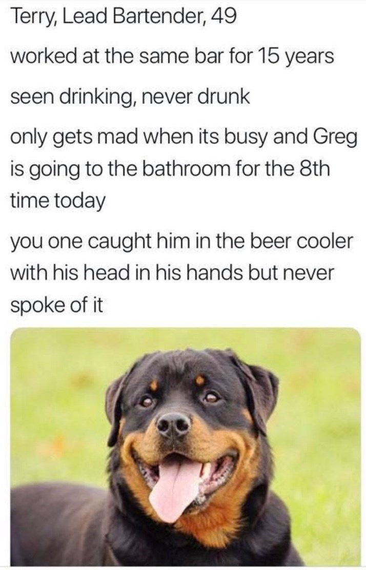 work meme - Dog - Terry, Lead Bartender, 49 worked at the same bar for 15 years seen drinking, never drunk only gets mad when its busy and Greg is going to the bathroom for the 8th time today you one caught him in the beer cooler with his head in his hands but never spoke of it
