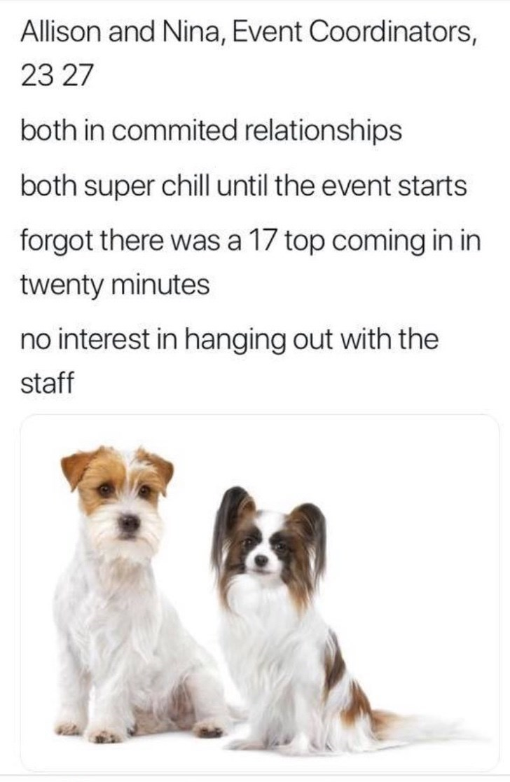 work meme - Dog - Allison and Nina, Event Coordinators, 23 27 both in commited relationships both super chill until the event starts forgot there was a 17 top coming in in twenty minutes no interest in hanging out with the staff
