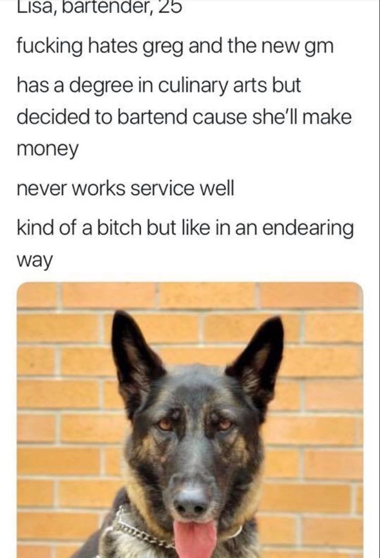 work meme - Mammal - Lisa, bartender, 25 fucking hates greg and the new gm has a degree in culinary arts but decided to bartend cause she'll make money never works service well kind of a bitch but like in an endearing way