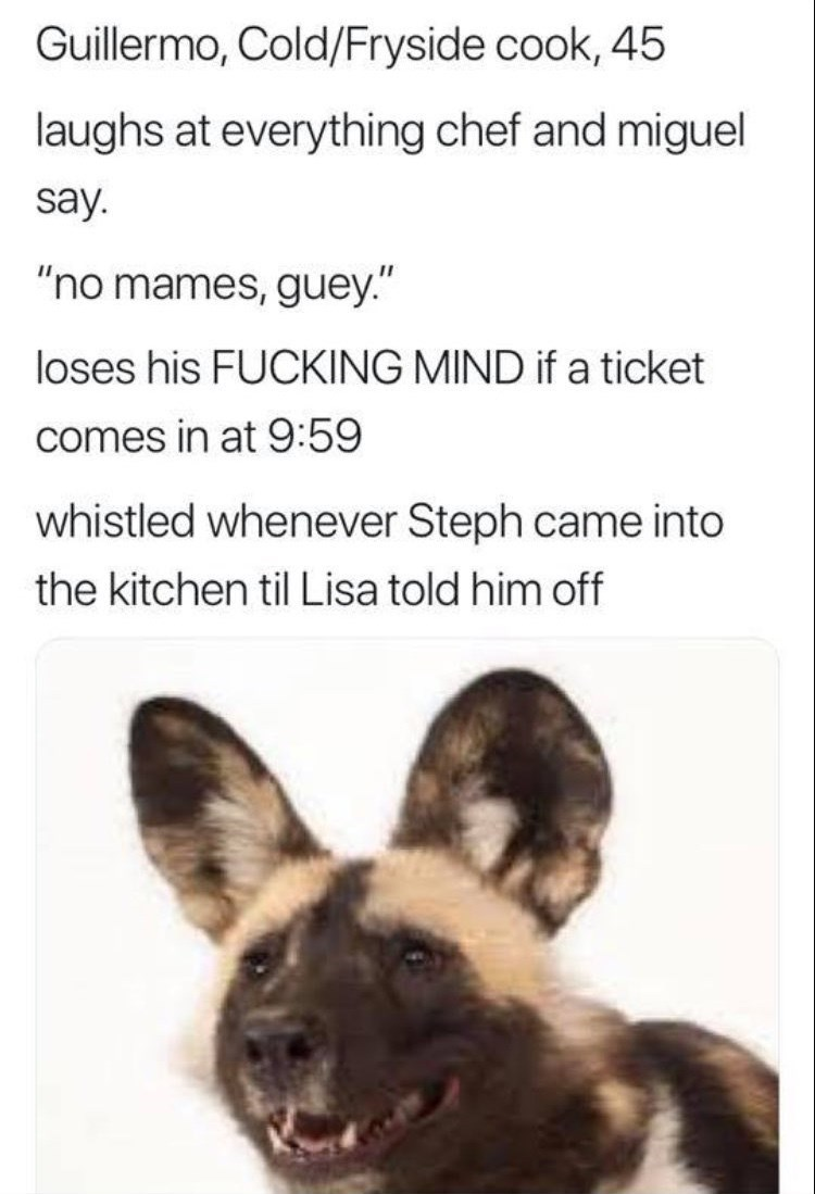 """work meme - Canidae - Guillermo, Cold/Fryside cook, 45 laughs at everything chef and miguel say. """"no mames, guey."""" loses his FUCKING MIND if a ticket comes in at 9:59 whistled whenever Steph came into the kitchen til Lisa told him off"""