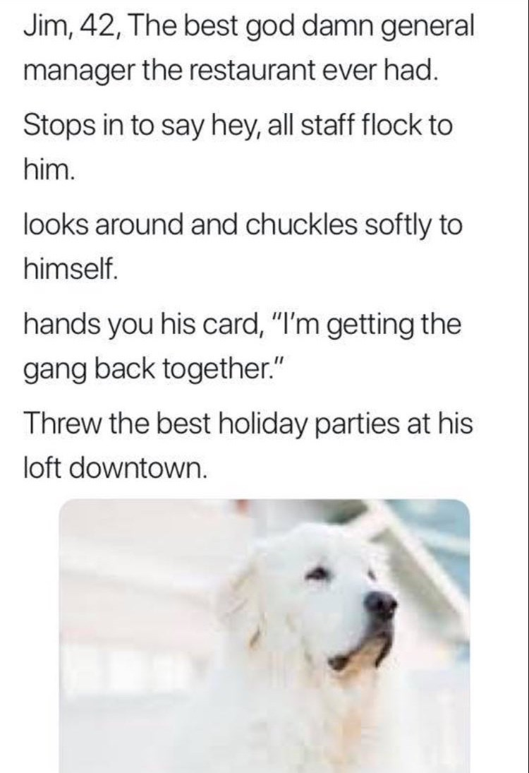 """work meme - Dog - Jim, 42, The best god damn general manager the restaurant ever had. Stops in to say hey, all staff flock to him. looks around and chuckles softly to himself. hands you his card, """"I'm getting the gang back together."""" Threw the best holiday parties at his loft downtown."""