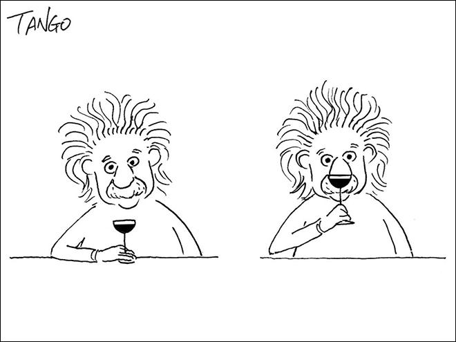 Face - TANGO