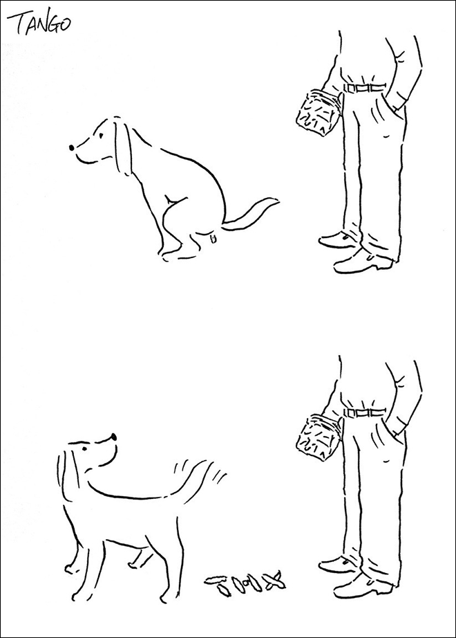 Vertebrate - TANEO