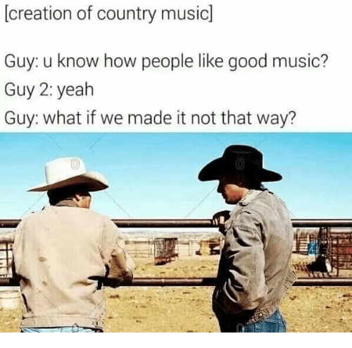 15 Country Music Memes For The Lovers The Haters Memebase