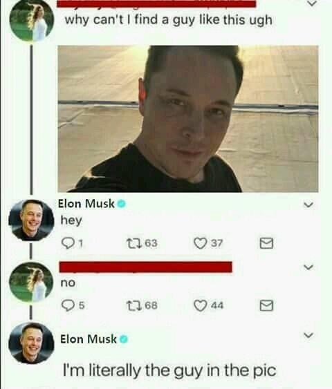 funny meme about elon musk.