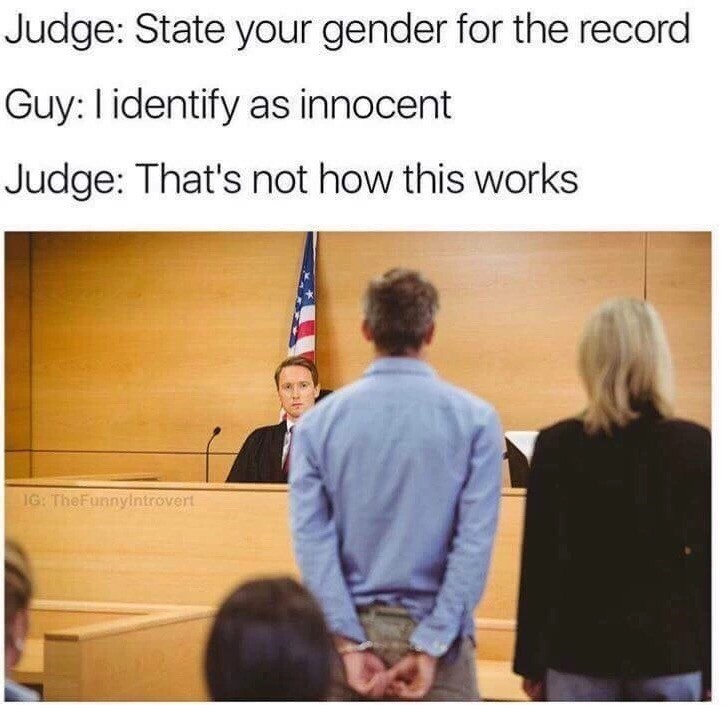 State your gender as innocent meme
