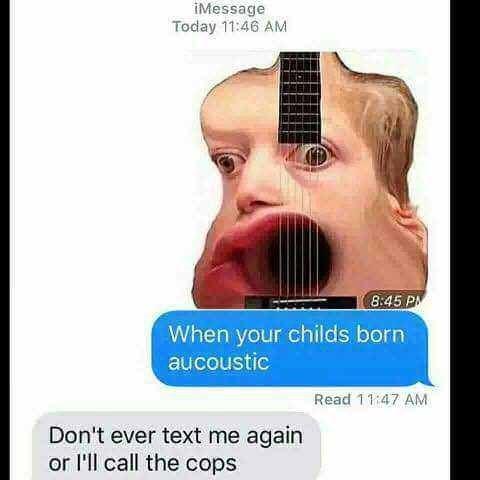 acoustic pun calling the cops meme