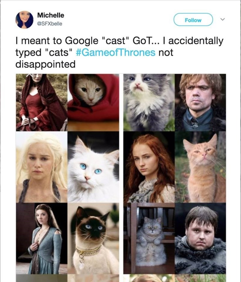 """Hair - Michelle Follow @SFXbelle I meant to Google """"cast"""" GoT... I accidentally typed """"cats"""" #GameofThrones not disappointed"""