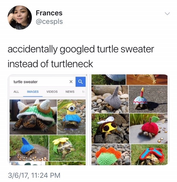 Adaptation - Frances @cespls accidentally googled turtle sweater instead of turtleneck turtle sweater ALL IMAGES VIDEOS NEWS 3/6/17, 11:24 PM