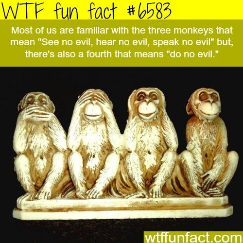 "wtf facts - Primate - WTF fun fact #583 Most of us are familiar with the three monkeys that mean ""See no evil, hear no evil, speak no evil"" but, there's also a fourth that means ""do no evil."" wtffunfact.com"