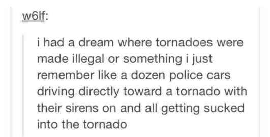 Text - w6lf: i had a dream where tornadoes were made illegal or something i just remember like a dozen police cars driving directly toward a tornado with their sirens on and all getting sucked into the tornado