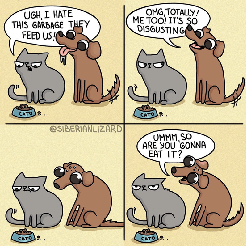Cartoon - OMG,TOTALLY! ME TOO! IT'S SO DISGUSTING UGH, I HATE THIS GARBAGE THEY FEED US! CATO CATO @SIBERIANLIZARD UMMM SO ARE YOU GONNA EAT IT? CATO CATO