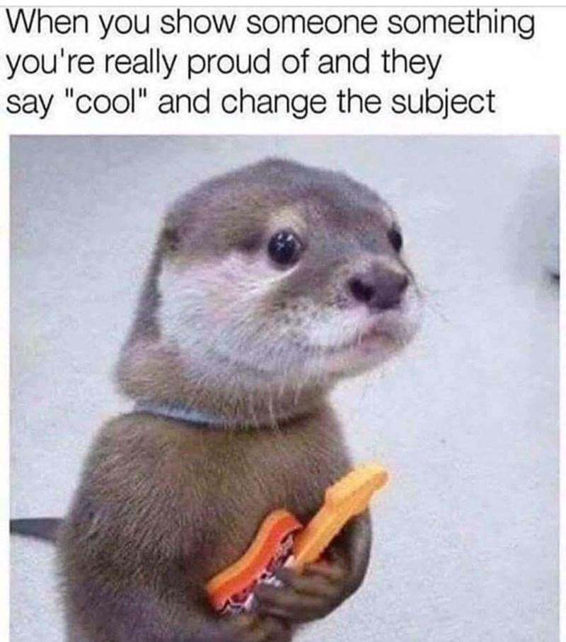 meme about feeling dejected when someone isn't impressed by work you're proud of