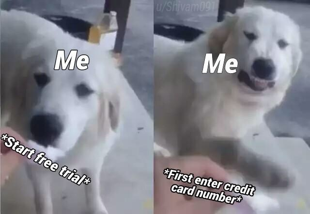 meme about not wanting to enter your credit card info when signing up for free trial