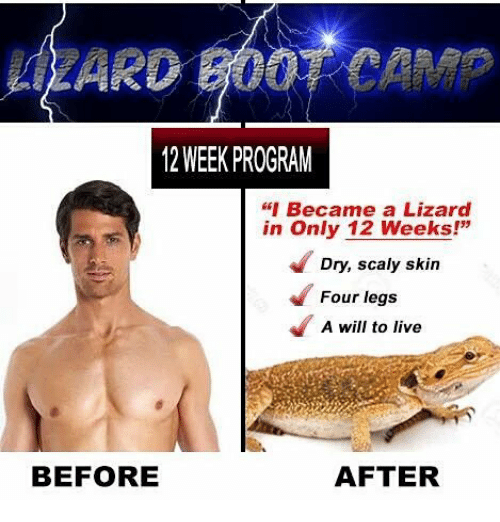 """Font - ZARD B00TCAM 12 WEEK PROGRAM """"I Became a Lizard in Only 12 Weeks!"""" Dry, scaly skin Four legs A will to live BEFORE AFTER"""