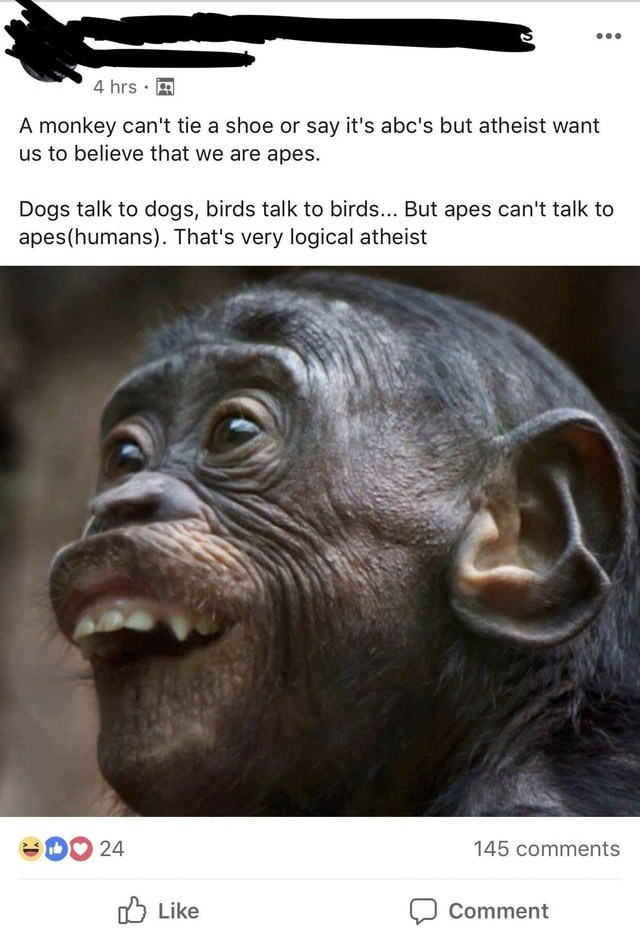 Face - 4 hrs A monkey can't tie a shoe or say it's abc's but atheist want us to believe that we are apes. Dogs talk to dogs, birds talk to birds... But apes can't talk to apes(humans). That's very logical atheist D 24 145 comments Like Comment