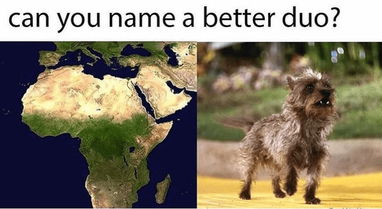 """Can you name a better duo?"" With a picture of the continent of Africa and Toto from the Wizard of Oz"