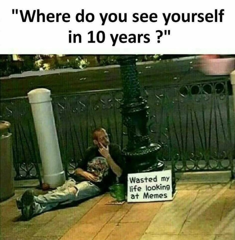 "Photo caption - ""Where do you see yourself in 10 years? Wasted my life looking at Memes"