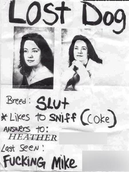 Facial expression - LOST Dog Breed SLut *Likes to SNiff Coke ANSWers to: HEATHER Last SeeN: FuckiNG Mike